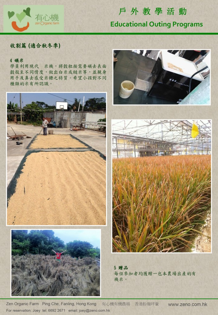 rice-workshop-leaflet-v3-4
